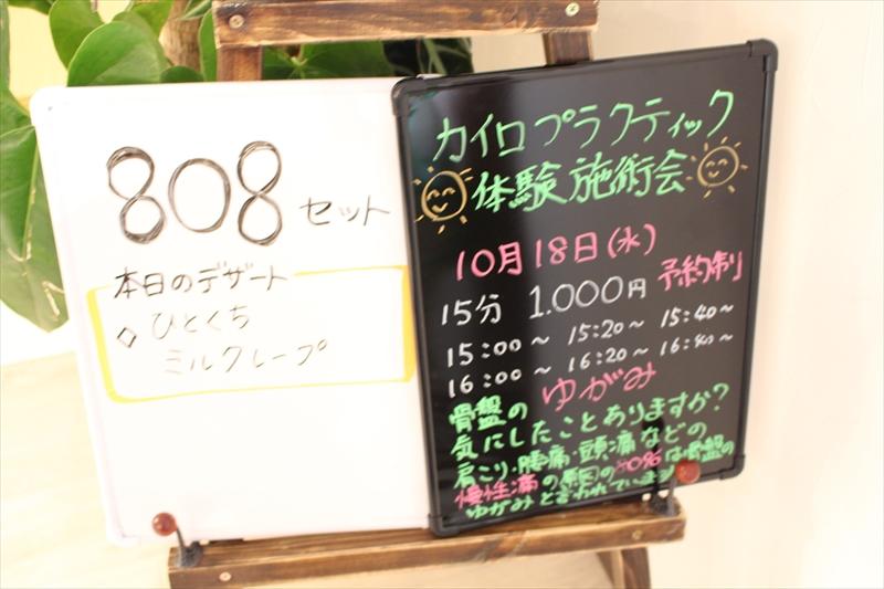 IMG_9003_R